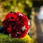Wedding bouquet with Red baccarra roses, and bouvardia, anemone and stephanotis