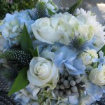 july 2010 blue bridal bouquet with hydrangea, white roses, berries, scabios