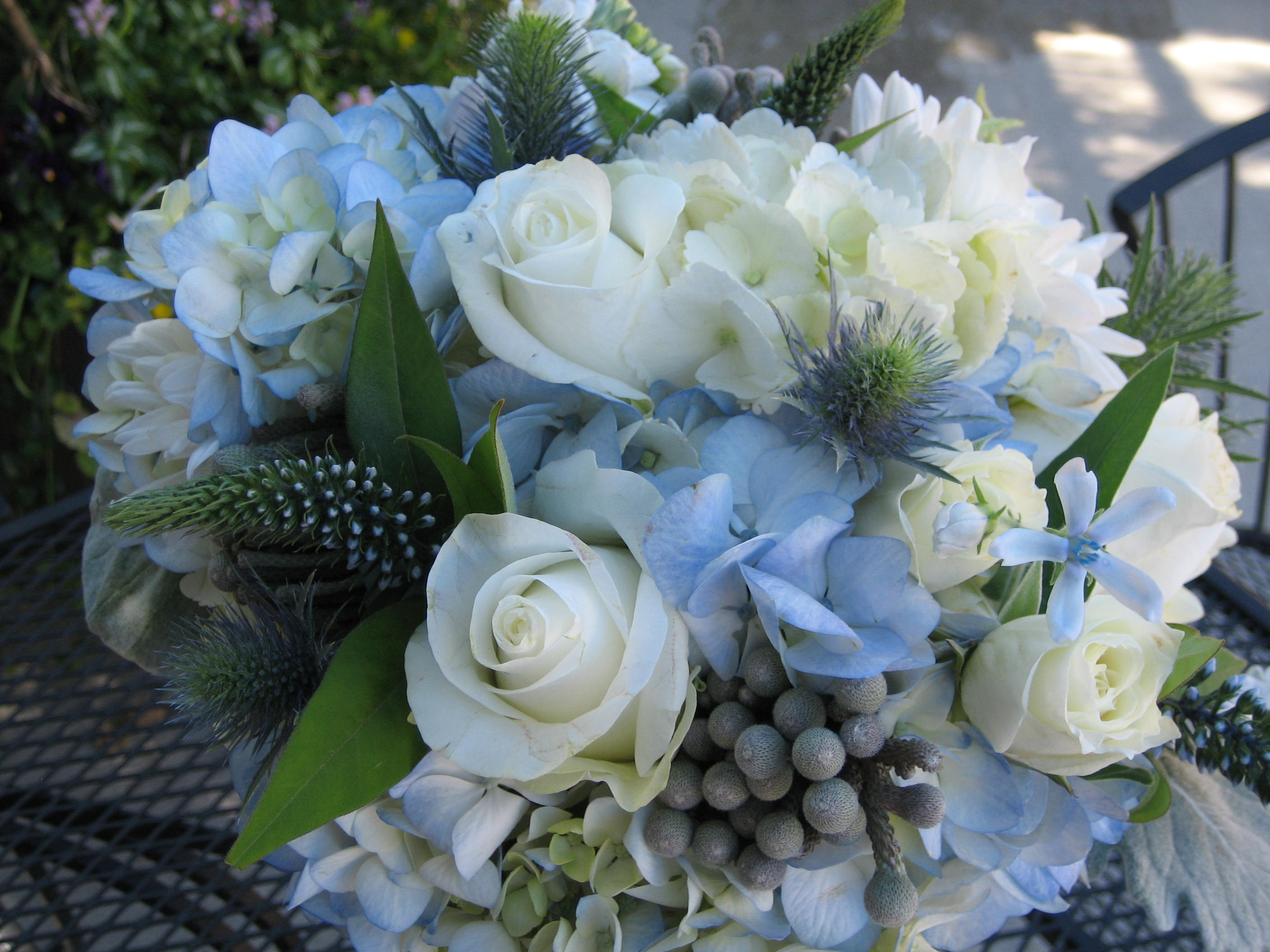 July 2010 Blue Bridal Bouquet With Hydrangea White Roses Berries Scabios